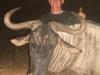 normal_aaron_blue_wildebeest