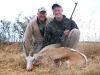 kent-common-springbok