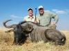 kents-wildebeest