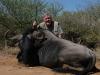 chuck_blue_wildebeest