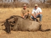 david_blue_wildebeest