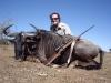 audrie_blue_wildebeest