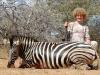 IRA Zebra (Large)