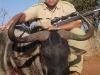 rodney_blue_wildebeest