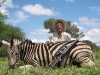 stephen_zebra